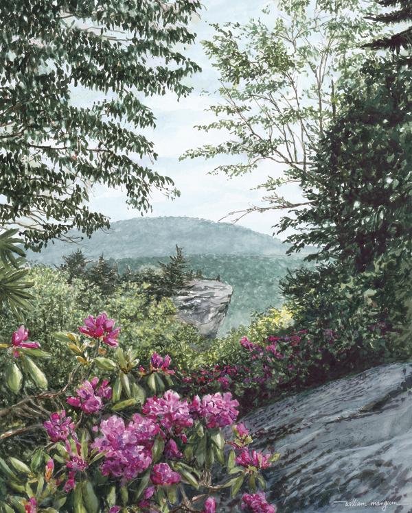50526 Blue Ridge Majesty
