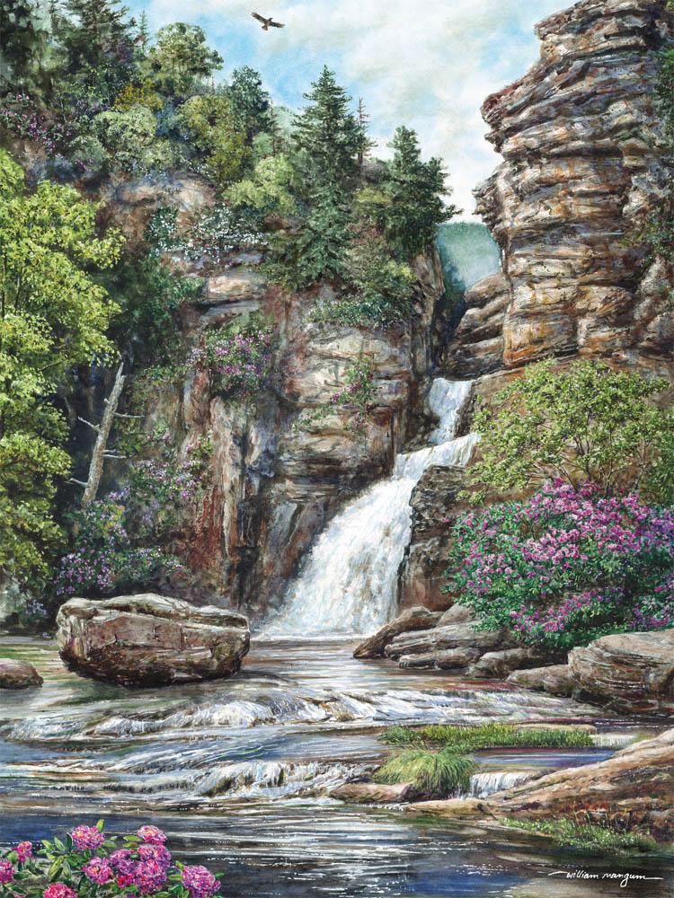 50542 Linville Falls