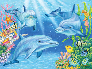70602 Dolphin Cove